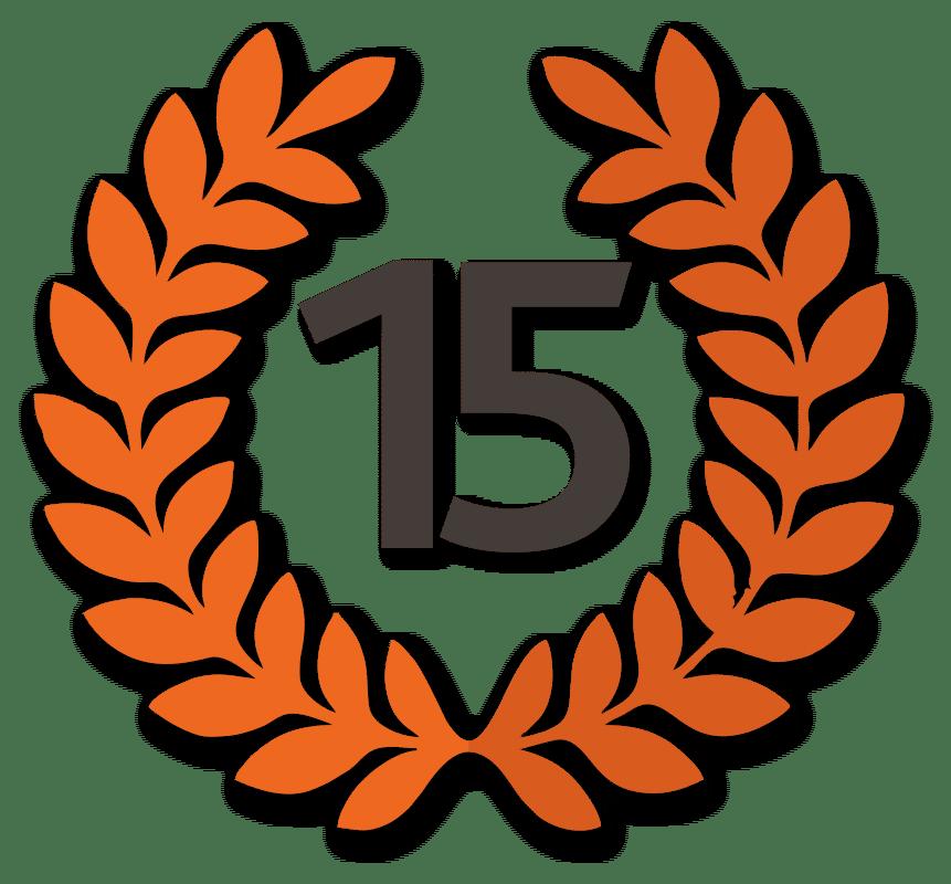 15 лет успеха